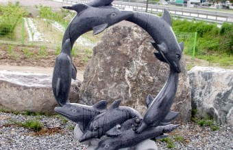 돌고래가족